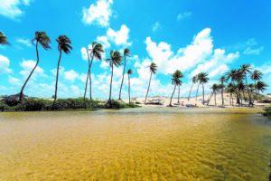 Na imagem o rio punau bem rasinho e ao fundo coqueiros em um ceu azulado